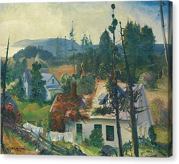 Maine Mountains Canvas Print - The Red Vine, Matinicus Island, Maine by George Bellows