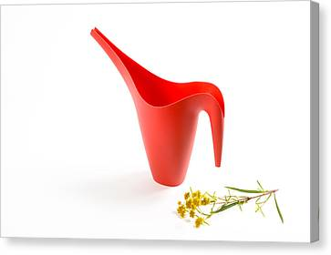 The Red Watering Can With Flowers Canvas Print by Lynn Berreitter