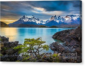 Reflecting Water Canvas Print - The Remains Of The Day by Inge Johnsson