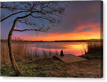 The Remains Of The Day Canvas Print by Nadia Sanowar