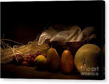 The Revealing Canvas Print by Levin Rodriguez