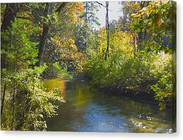 The River  Canvas Print by Sheryl Thomas