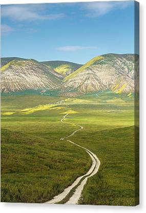 The Road Down Canvas Print