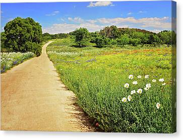 The Road Home Canvas Print