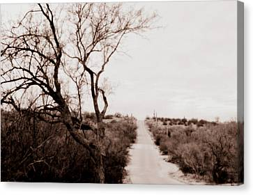 The Road Less Traveled Canvas Print by Nature Macabre Photography
