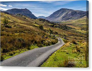 The Road Less Travelled Canvas Print by Adrian Evans