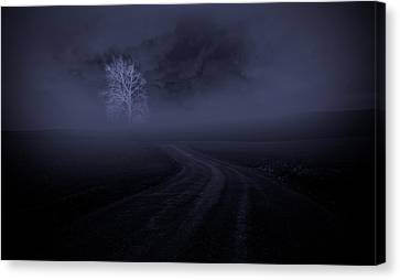 Canvas Print featuring the photograph The Road by Robert Geary