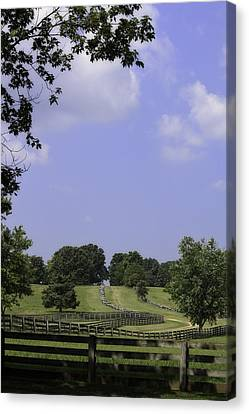 The Road To Lynchburg From Appomattox Virginia Canvas Print by Teresa Mucha