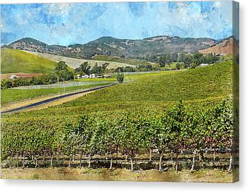 The Road To Napa Valley Vineyard Canvas Print by Brandon Bourdages