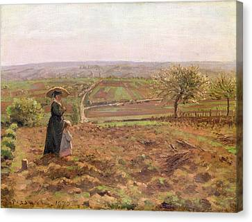 The Road To Rouen Canvas Print by Camille Pissarro