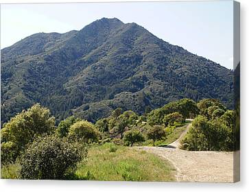 The Road To Tamalpais Canvas Print by Ben Upham III