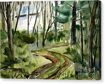 The Road Up Matted Glassed Framed Canvas Print by Charlie Spear