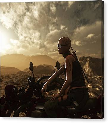 The Road Warrior Canvas Print by Melissa Krauss
