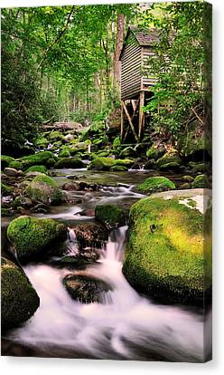 The Roaring Fork And Reagan's Mill Canvas Print