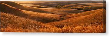 The Rolling Hills Of Konza Prairie Canvas Print by Jim Richardson
