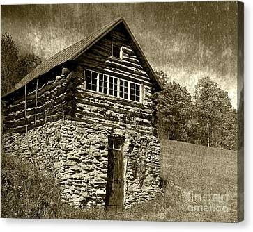 Canvas Print featuring the photograph The Root Cellar by Pete Hellmann