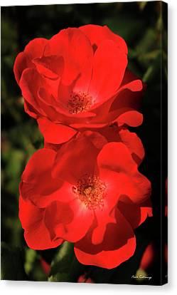 Flowerrs Canvas Print - The Rose 8 Flower Garden Art by Reid Callaway