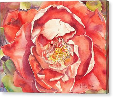 Canvas Print featuring the painting The Rose by Mary Haley-Rocks