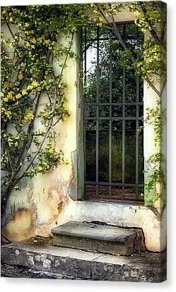 The Rose Vined Door Canvas Print by Lynn Andrews