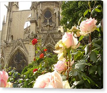 The Roses Of Notre Dame Canvas Print by John Julio