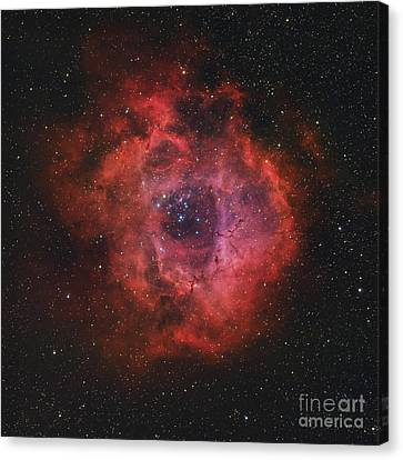 The Rosette Nebula Canvas Print by Rolf Geissinger