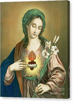 The Sacred Heart Of Mary Canvas Print by German School