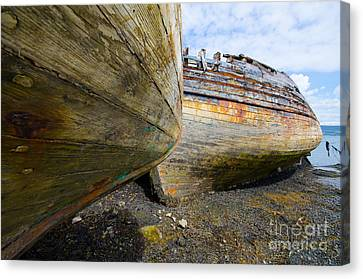 The Salen Wrecks Canvas Print by Nichola Denny