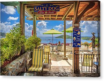 The Salty Dog Charlotte Amalie Canvas Print by Keith Allen