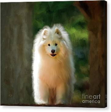 The Samoyed Smile Canvas Print by Lois Bryan