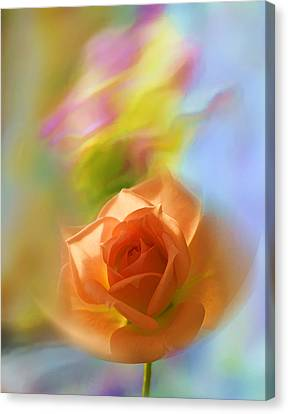 Canvas Print featuring the photograph The Scent Of Roses by Vladimir Kholostykh
