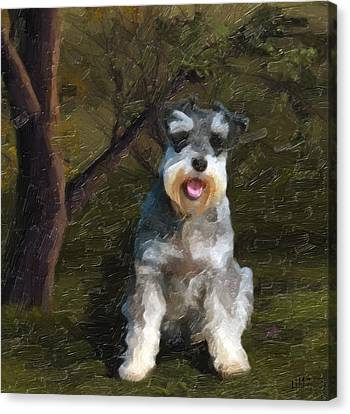 Dog Canvas Print - The Schnauzer by Tilly Williams