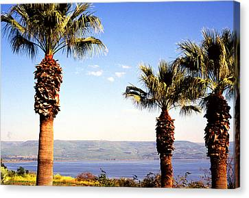 The Sea Of Galilee From The Mount Of The Beatitudes Canvas Print