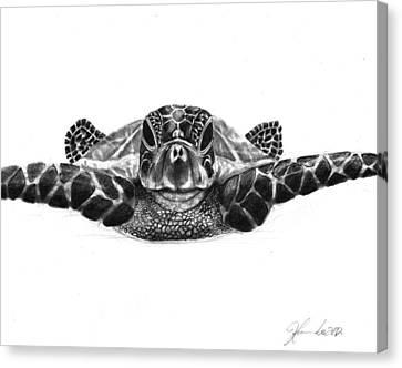 The Sea Traveler Canvas Print by J Ferwerda