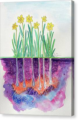 The Secret Life Of Daffodils Canvas Print by Bonnie Kelso