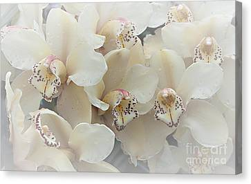 The Secret To Orchids Canvas Print by Sherry Hallemeier