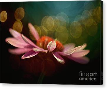 The Secret World Of Coneflowers Canvas Print by Lois Bryan