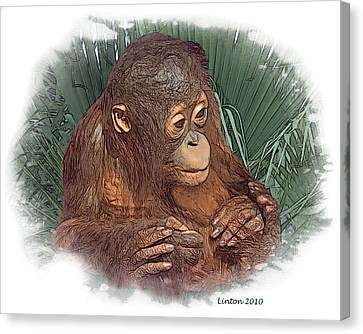 Ape Canvas Print - The Security Of A Mother's Hands by Larry Linton