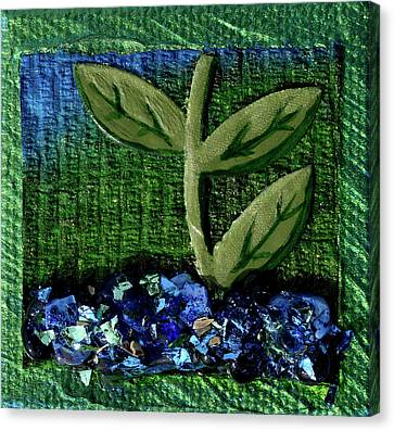 The Seedling Canvas Print by Donna Blackhall