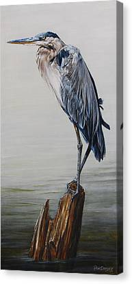 Great Blue Heron Canvas Print - The Sentinel - Portrait Of A Great Blue Heron by Dreyer Wildlife Print Collections
