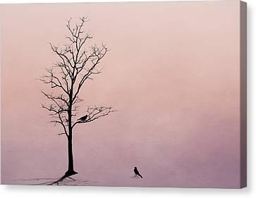 Lovebird Canvas Print - The Serenade by Tom Mc Nemar