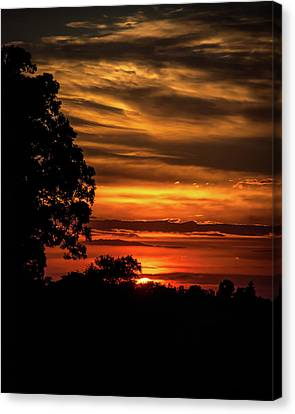 Canvas Print featuring the photograph The Setting Sun by Mark Dodd
