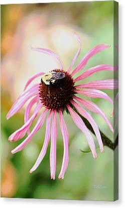 Canvas Print featuring the photograph The Sharing Game by Deborah  Crew-Johnson