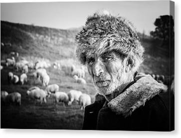 Romania Canvas Print - The Shepherd by Cornel Mosneag