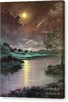 The Silence Of A Falling Star Canvas Print by Randy Burns