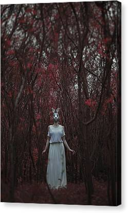 The Silence Of The Woods Canvas Print by Art of Invi
