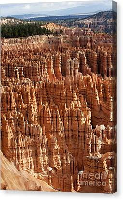 Hoodoos Canvas Print - The Silent City by Sandra Bronstein