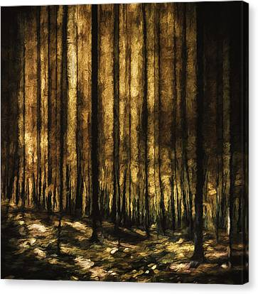 The Silent Woods Canvas Print by Scott Norris