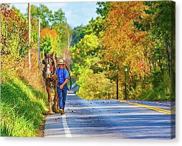 Plow Horse Canvas Print - The Simple Life 2 by Steve Harrington