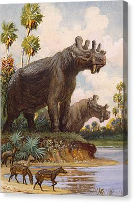 The Six-horned Uintatheres Thrived Canvas Print by Charles R. Knight