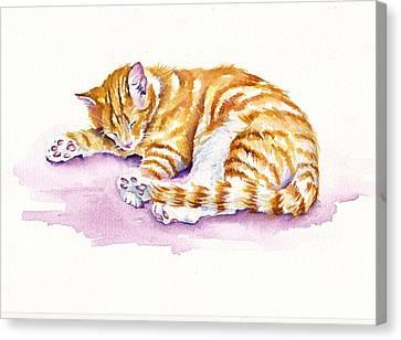Cat Canvas Print - The Sleepy Kitten by Debra Hall